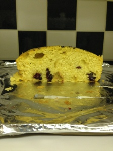 Cut up Craisins and Olive oil cake. Made by Helen