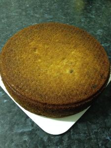 Rhubarb yoghurt cake